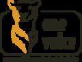 One_voice_logo